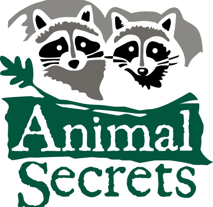 'Animal Secrets' Coming This Summer to SciWorks